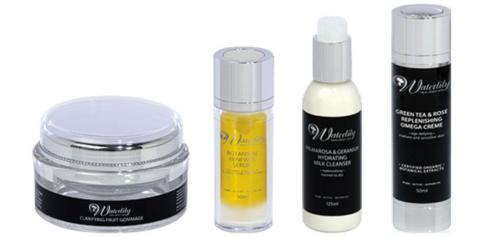 Waterlily skincare products for winter skincare routine