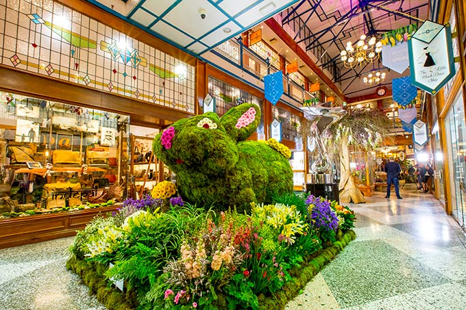 A florally fantastic 'Spring Jungle' is what Brisbane Arcade will transform into for one week only.