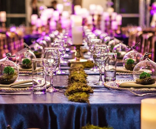 Must see photos from Enchanted Garden dinner