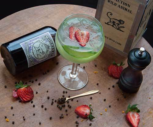 Worship Brisbane's gin mecca with Dutch Courage