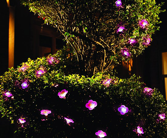 Solar Garden String Lights Petunia Pack of 10 Gardman, $25